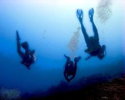 Alien Divers