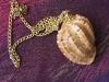 A harp shell pendant