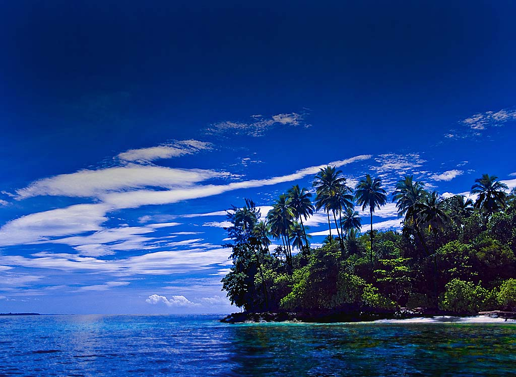 Sunglasses West Island