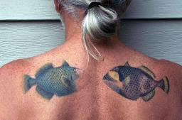 Triggerfish on my back
