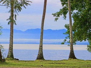 The Finnesterre Mountains, Madang, Papua New Guinea