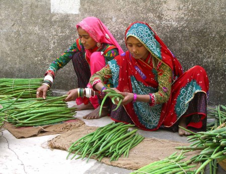 In India, women sort green beans - Heidi Majano