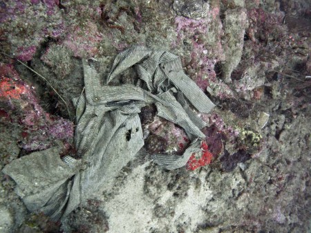 Clothing found at 40 metres