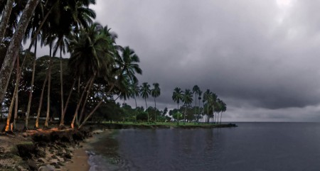 A grey morning at Coconut Point